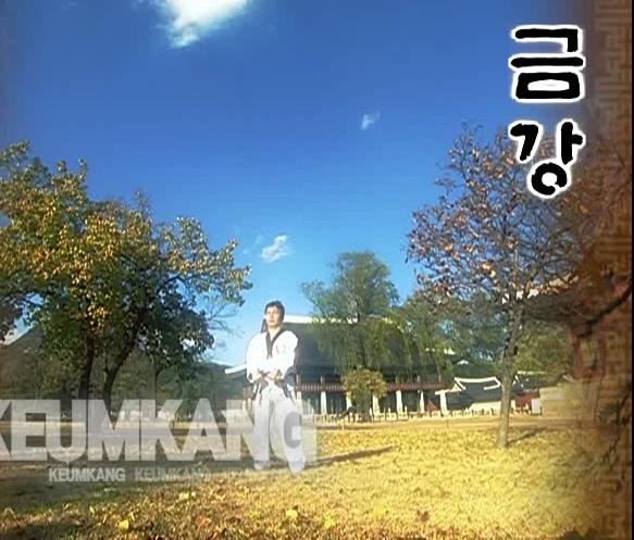 10 Keum Gan - Poomse - KUKKIWON