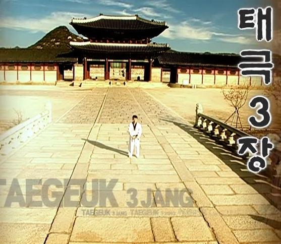 3 Tae Geuk sam jang - Poomse - KUKKIWON
