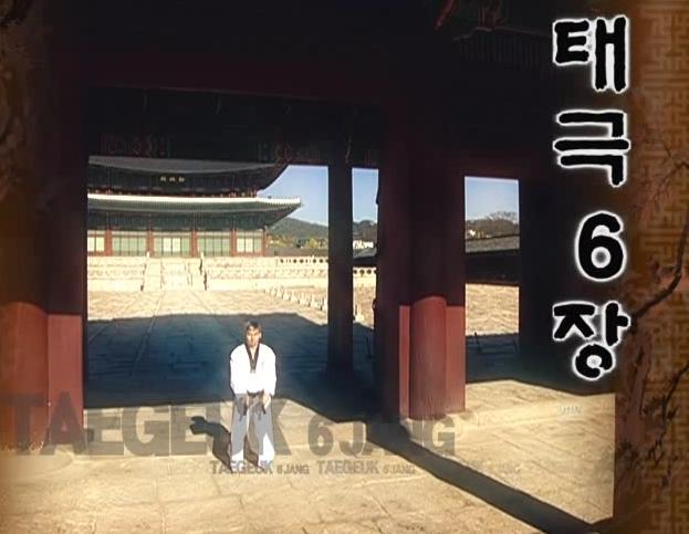 6 Tae Geuk youk jang - Poomse - KUKKIWON